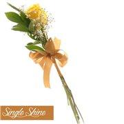 Single Shine