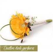 Button Hole Gerbera