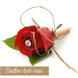 Button Hole Rose