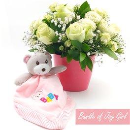 Bundle of Joy Girl