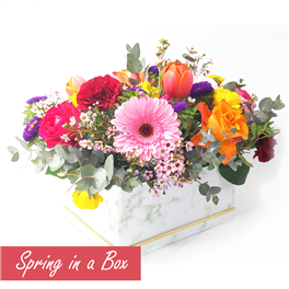 Spring in a Box