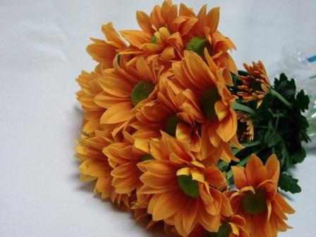 Chrysanthemum Orange Daisy / Sprays / Asters