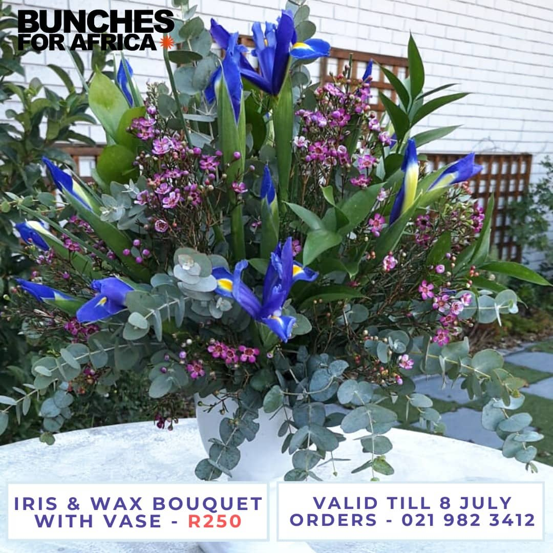 Iris and wax bouquet with vase