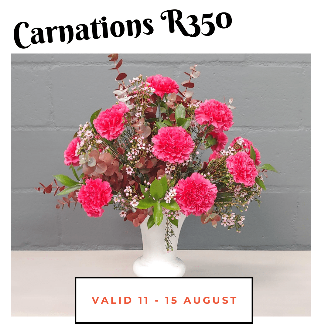 Carnation Love - valid 11-15 Aug